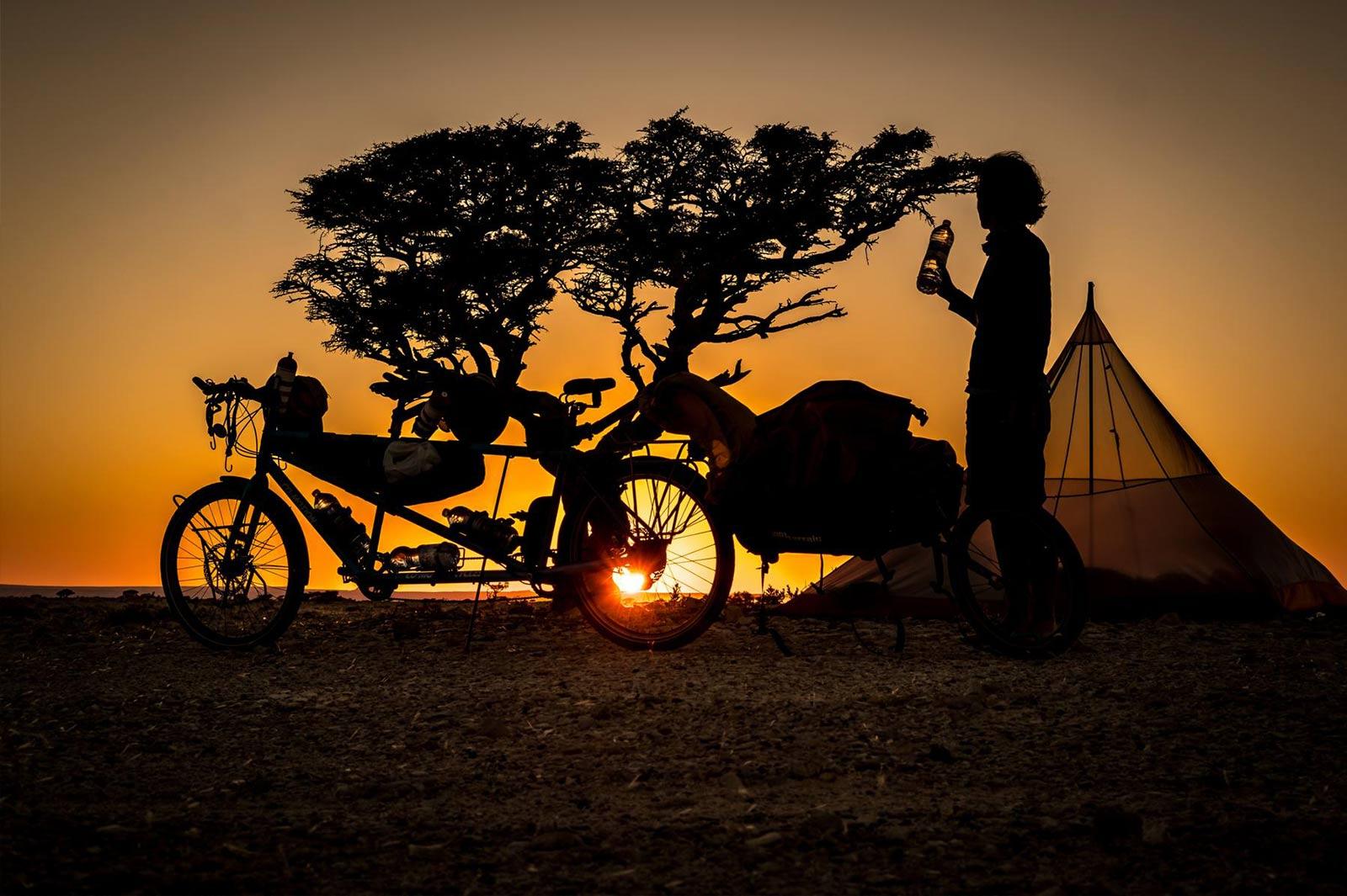 Die Silhouetten eines Mannes, einem Zelt und einem Tandem neben einem Baum im Sonnenuntergang.