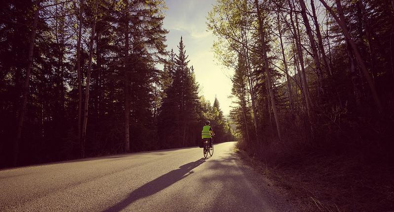 Ein einsamer Radfahrer mit gelber Weste auf einer von Wald gesäumten Straße.